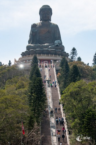 266 Stufen zum Buddha.